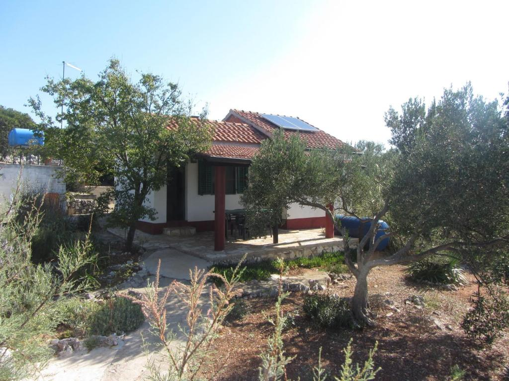 House Rosemary