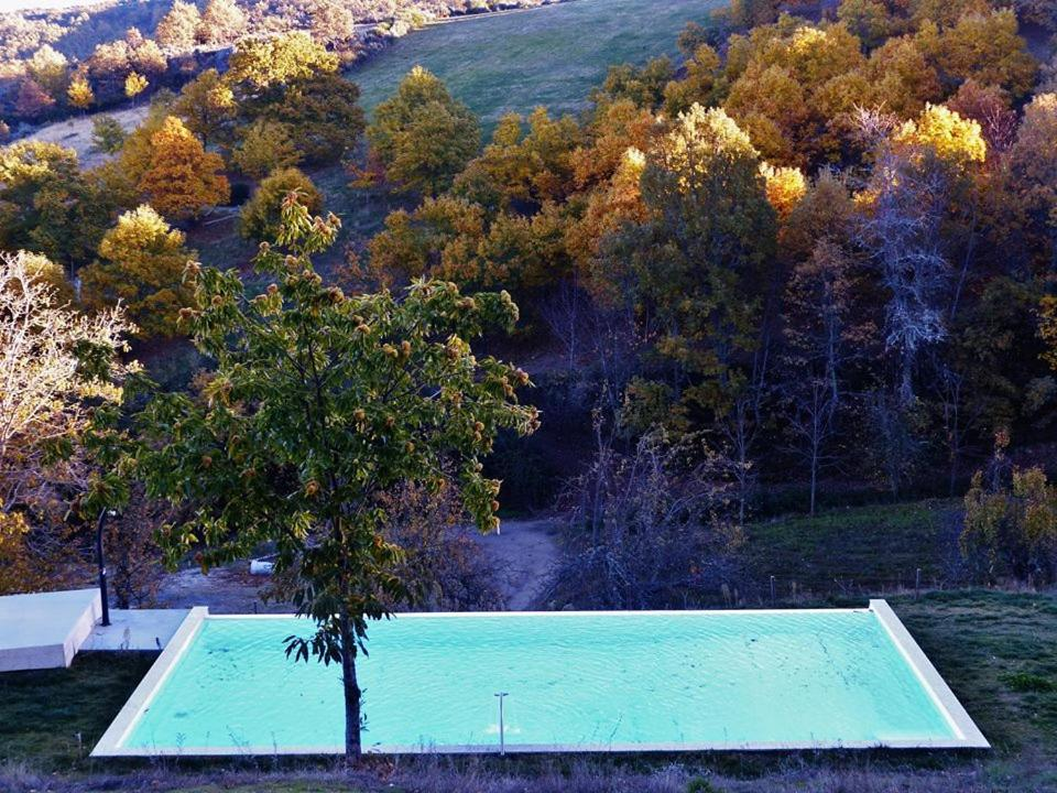 The swimming pool at or near Quinta das Colmeias
