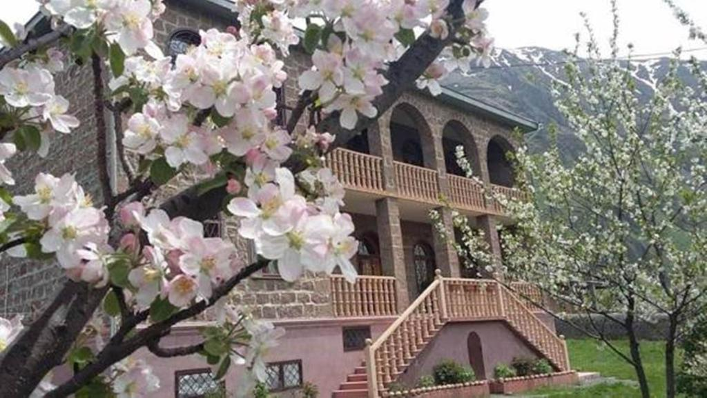 Gogi Alibegashvili Guesthouse