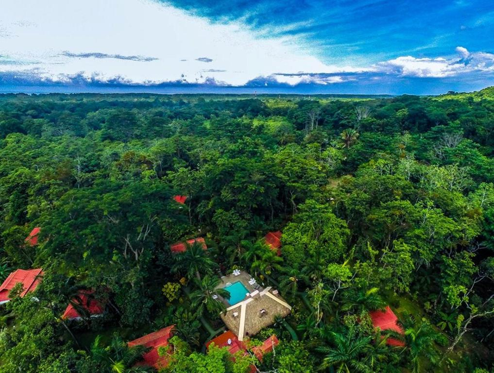 A bird's-eye view of Hotel La Palapa Eco Lodge Resort