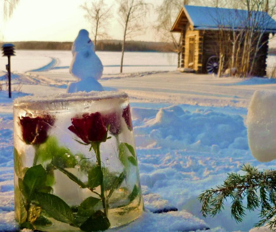 Ainola Cottage Alapitka Paivitetyt Vuoden 2020 Hinnat