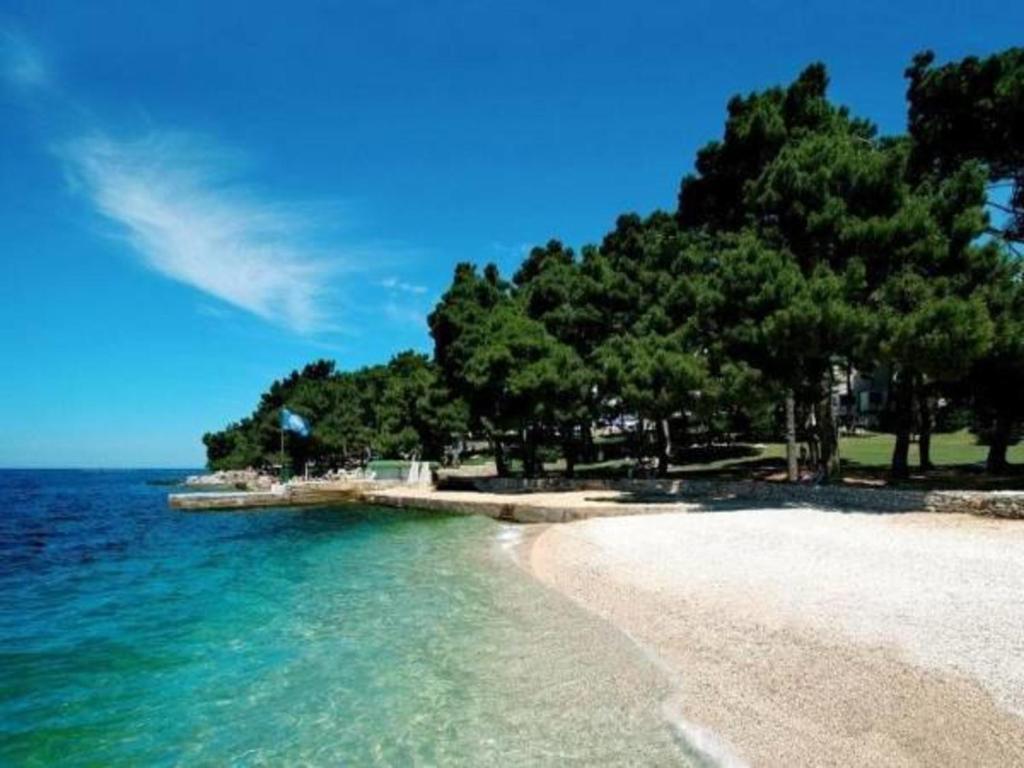 Beach sa o malapit sa holiday park