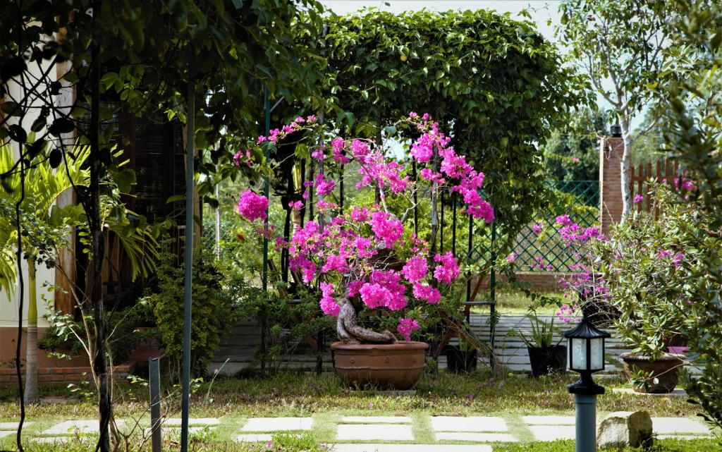 Giardino di Spring Garden Homestay