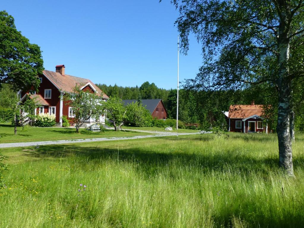 En trädgård utanför Gröna Ånäs