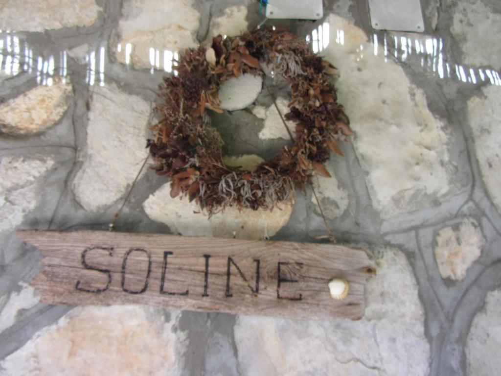 House Soline