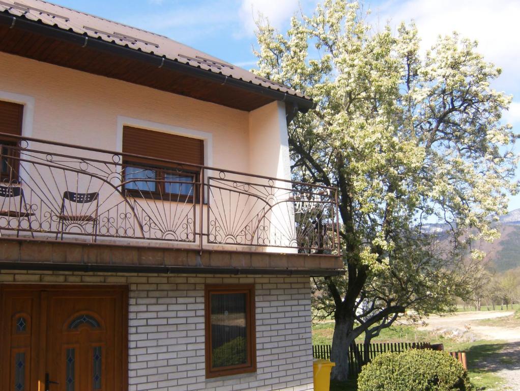House Drakulić