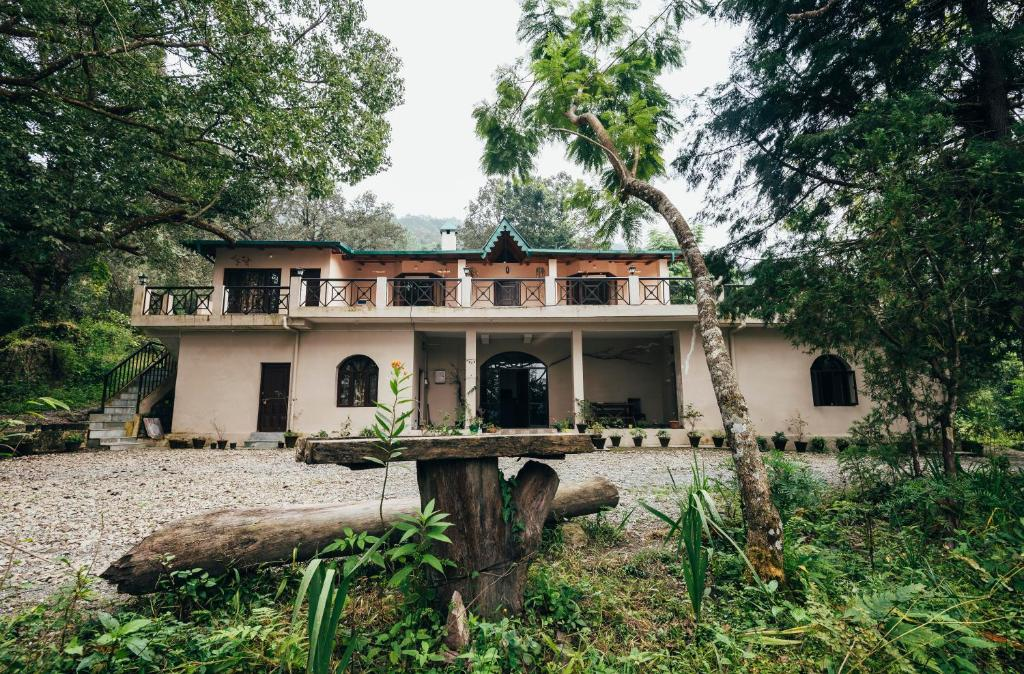 The Camphor Tree - Pura Stays