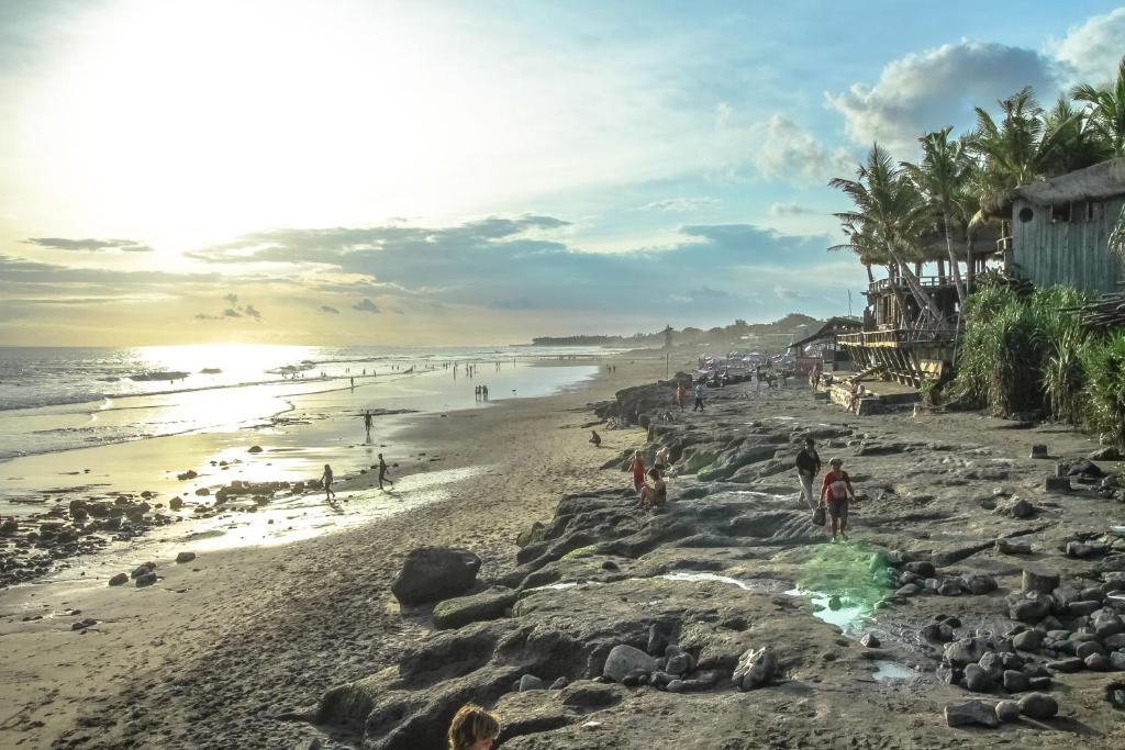 青年旅館海灘或附近的海灘