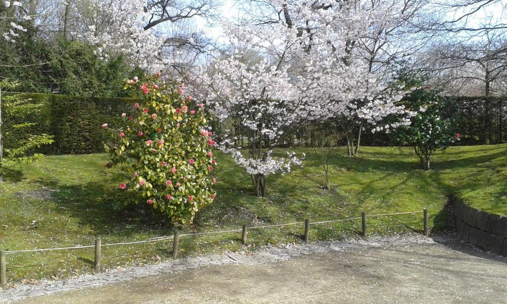 Een tuin van B&B Appelkers II