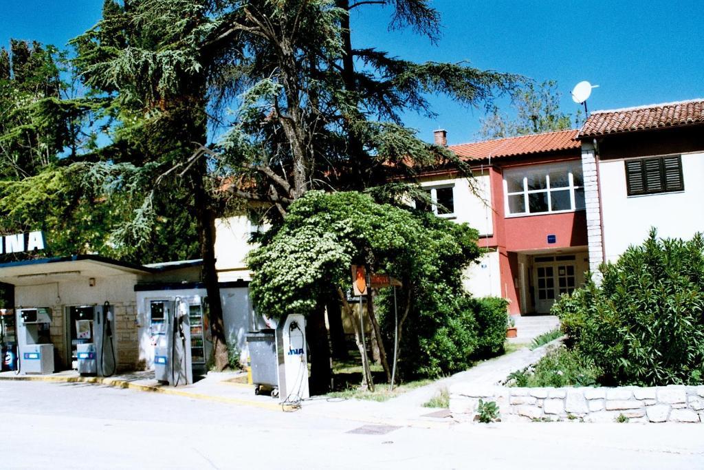 Hostel Amfora