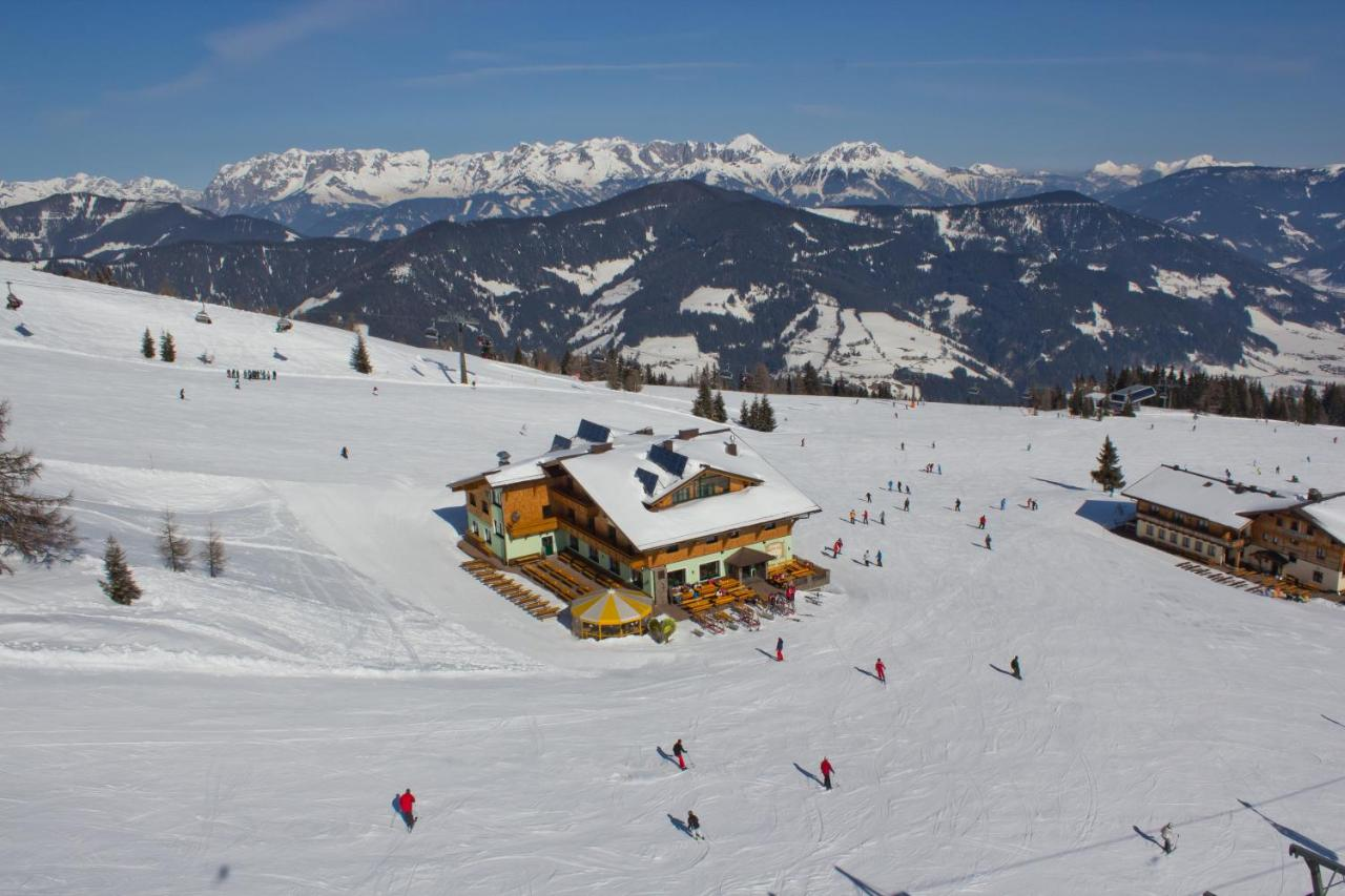 Spring packages Offers and All-inclusive prices Flachau - bergfex