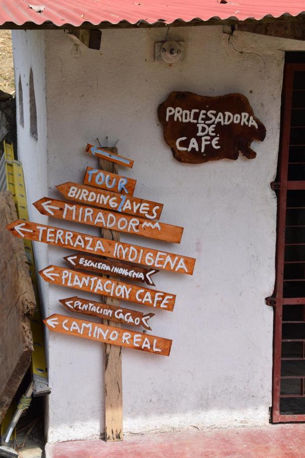 Farm Stay Finca San Rafael Cafe Y Cacao Minca Colombia