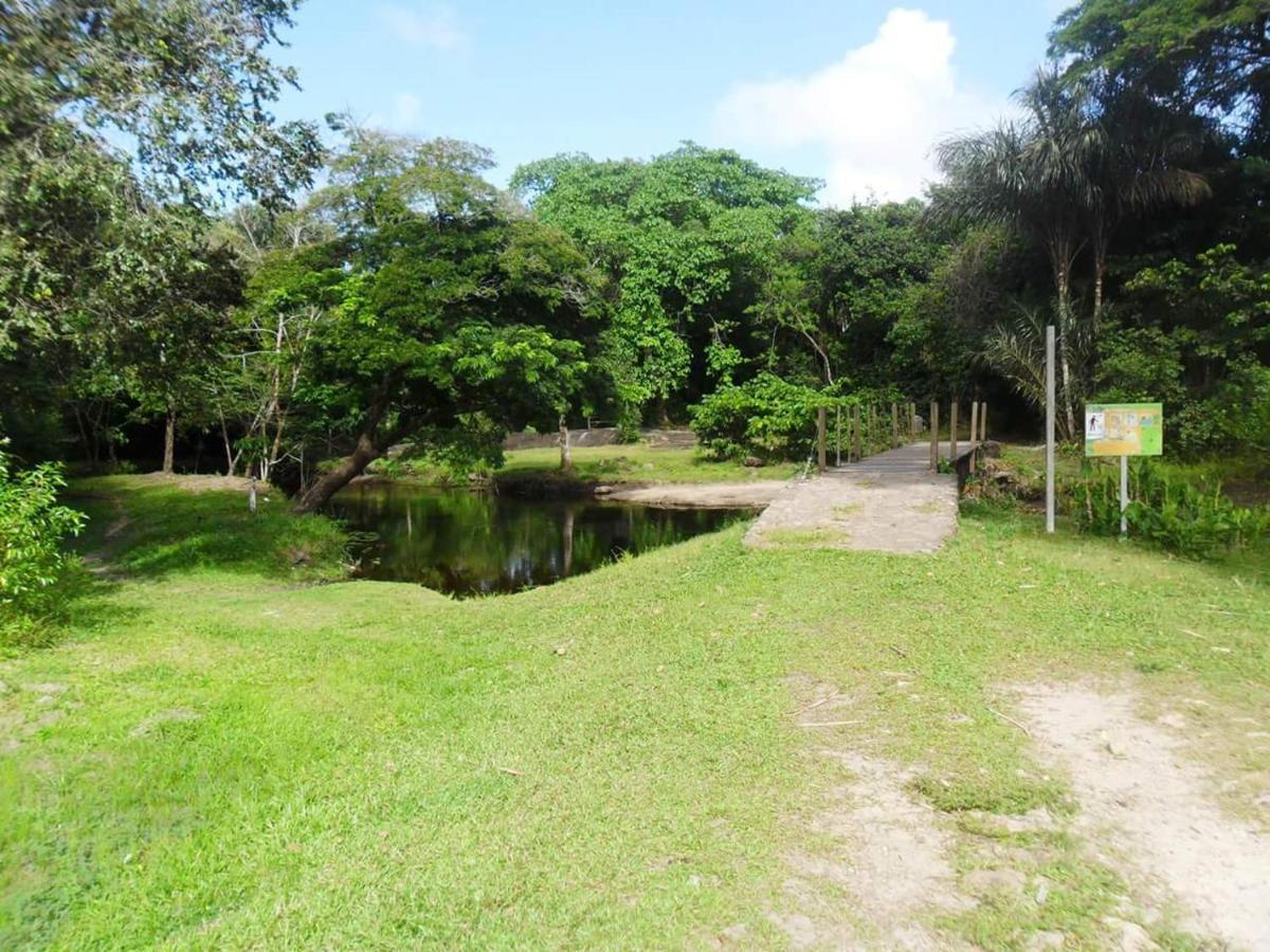 Gvajana za upoznavanje