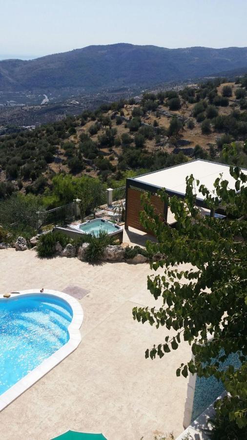 Дом для отпуска  Villa Cecilia