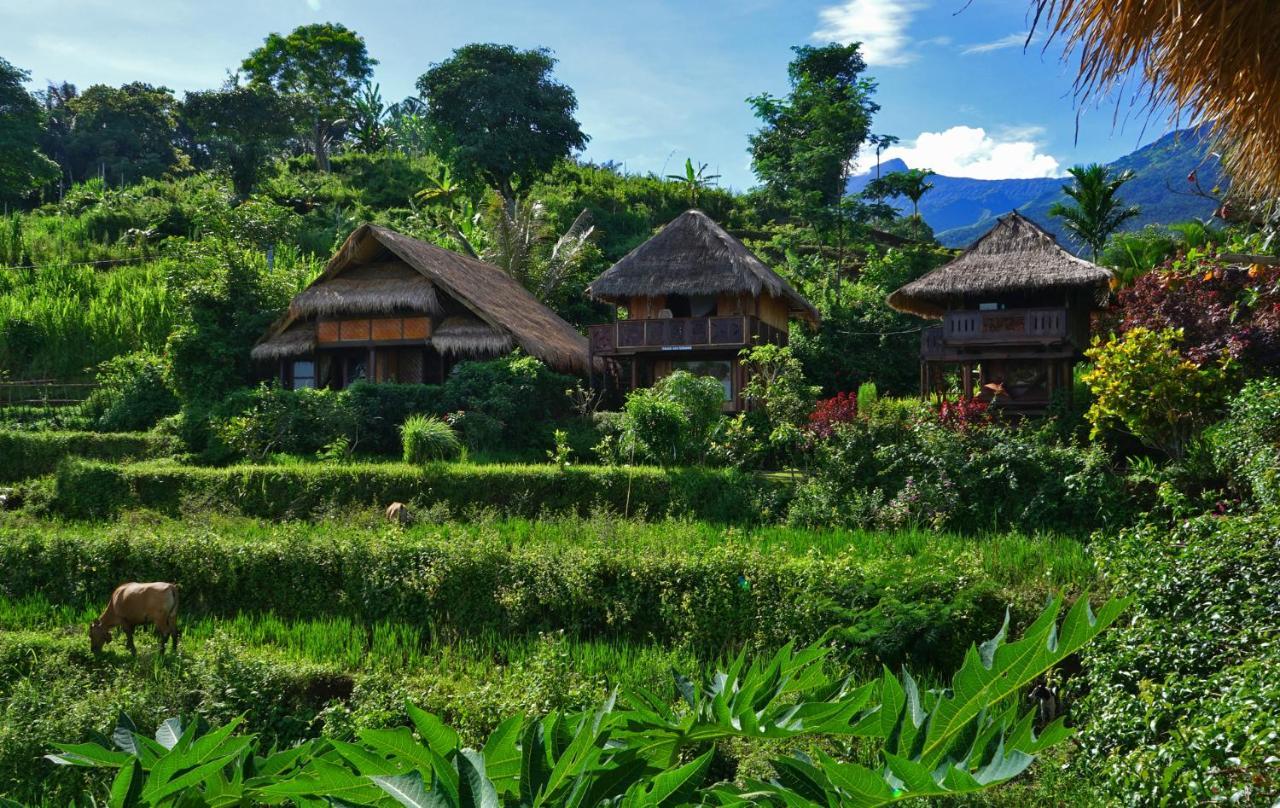 Курортный отель  Rinjani Mountain Garden