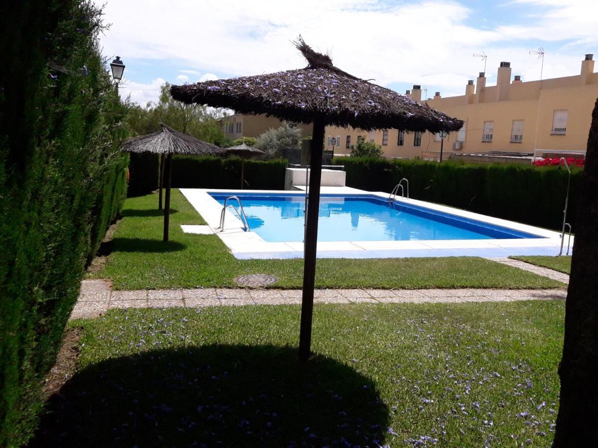 Apartment Atico Con Piscina Gran Terraza Mairena Del