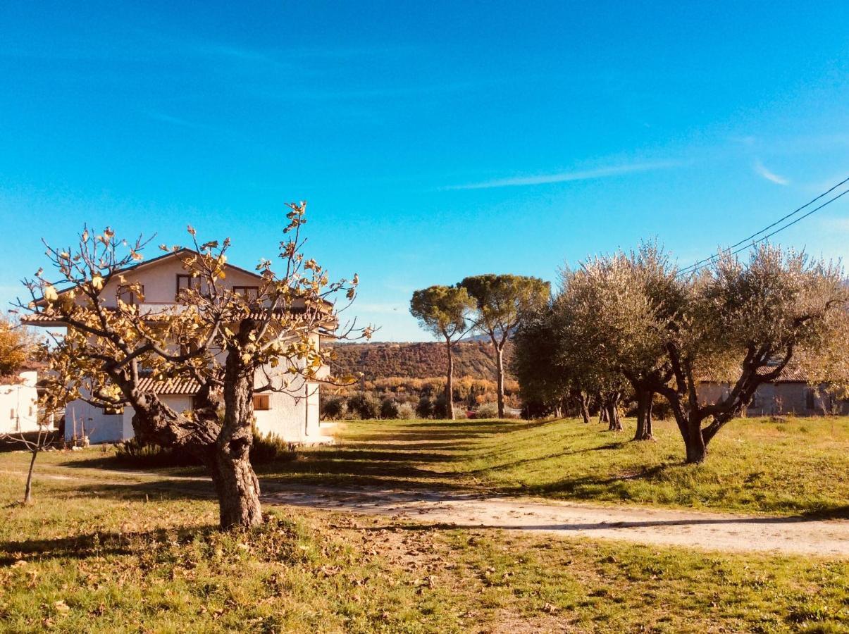 Загородный дом  Le Terre D'Abruzzo