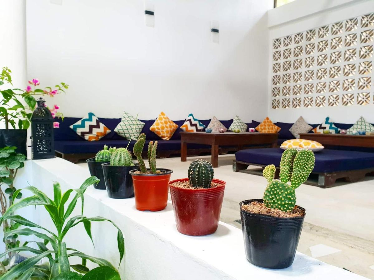 Мини-гостиница  Riad Masaya