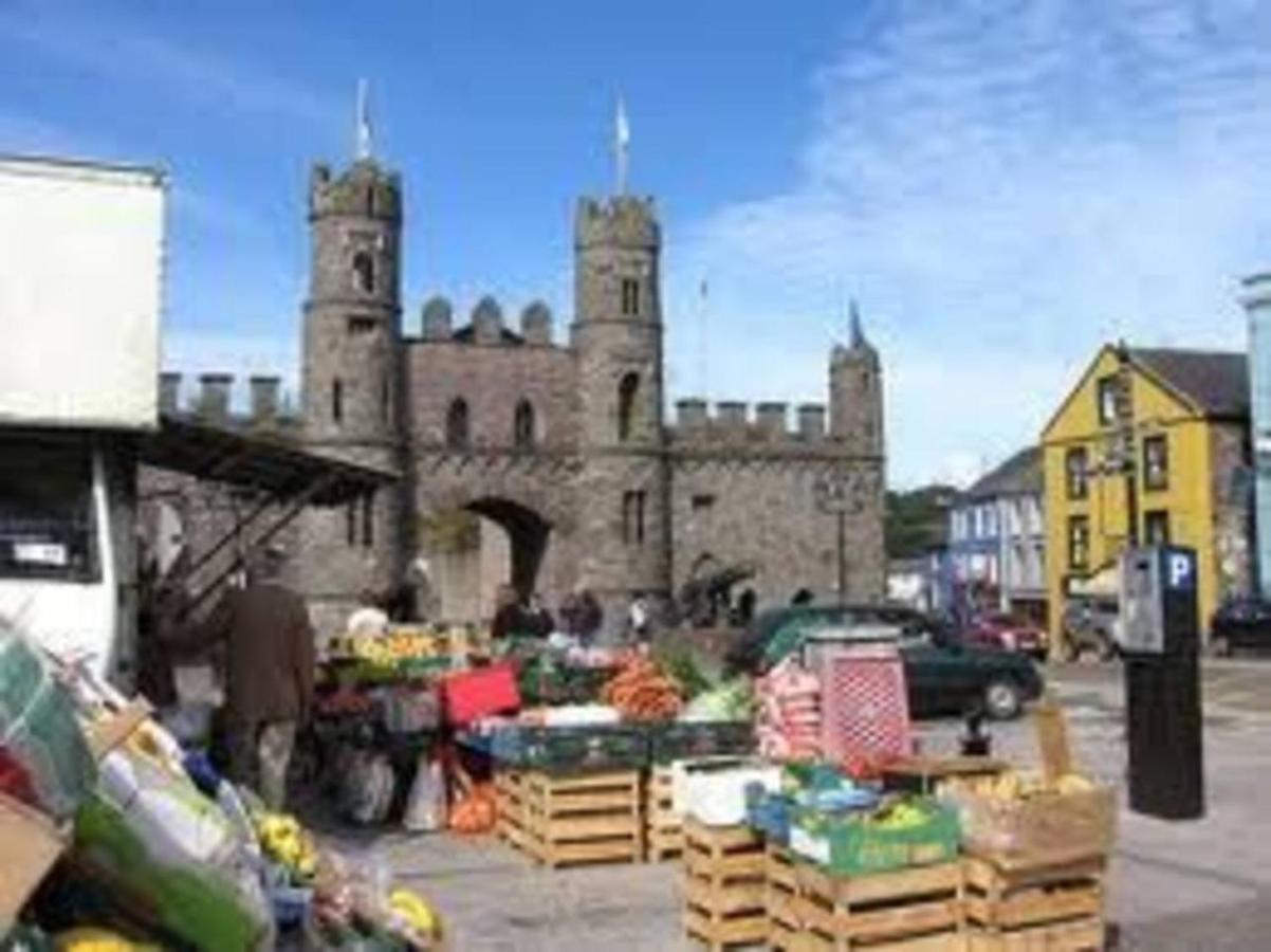 research + dig - Cork County Council