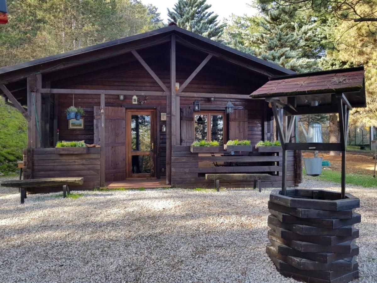 C È Una Casa Nel Bosco baita nel bosco, l'aquila – prezzi aggiornati per il 2020