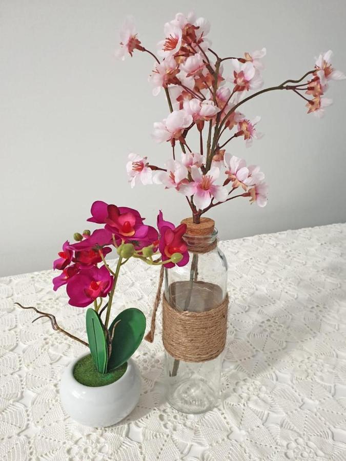 cherry blossoms dating site přihlásit seSeznamovací přítel na 2 roky