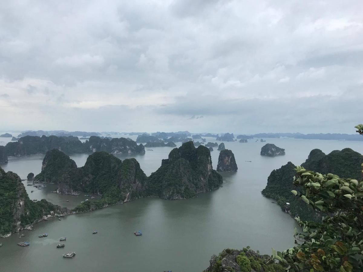 Проживание в семье  Cuong Thinh Ha Long