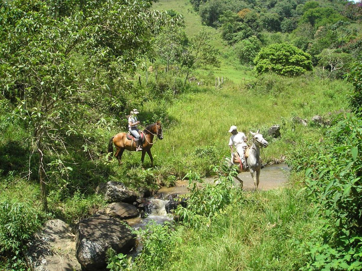 Equitação no alojamento de turismo rural ou nas proximidades