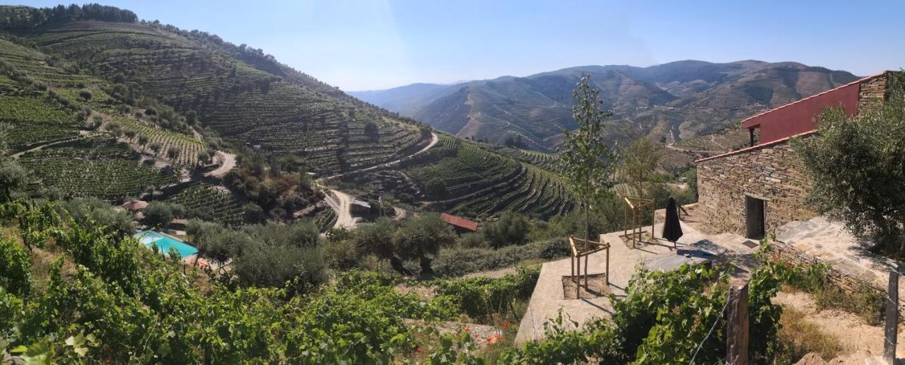 Вилла  Quinta Das Fontainhas - Douro Valley