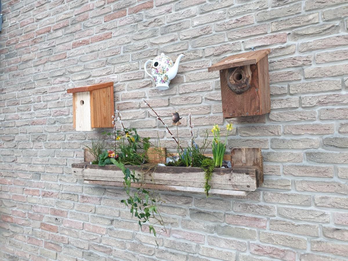 Апартаменты/квартира  Ferienwohnung Vogelvilla