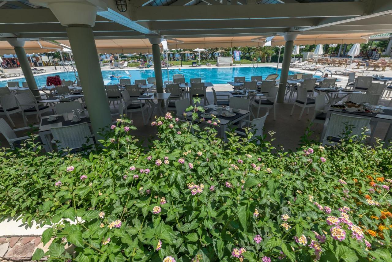 Swimming Pool Contractors Apollo Beach