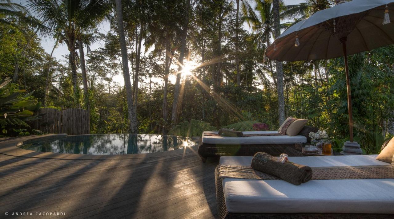 Fine Ferienpark Sandat Glamping Tents Indonesien Ubud Booking Com Beatyapartments Chair Design Images Beatyapartmentscom