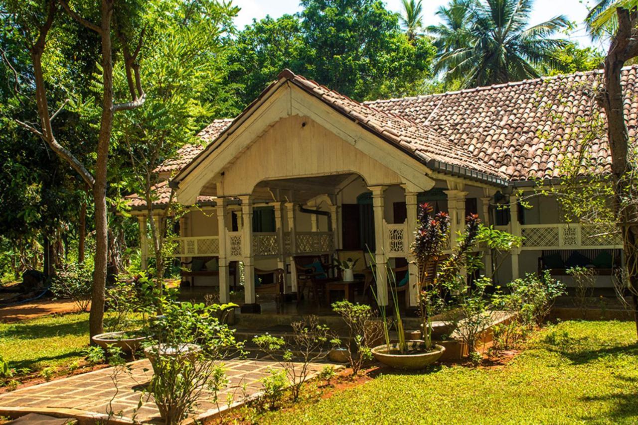 Cadjan Sacred Anuradhapura