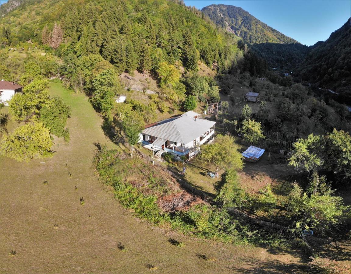 Загородный дом  Country House Laia