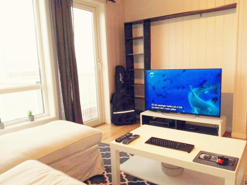 Апартаменты/квартира  Aalesund Apartment With Island View