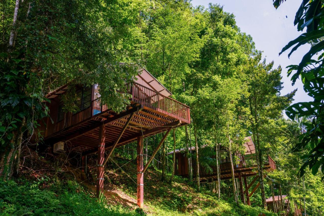 Andrea Berg Oops bergendal amazonia wellness resort, berg en dal, suriname