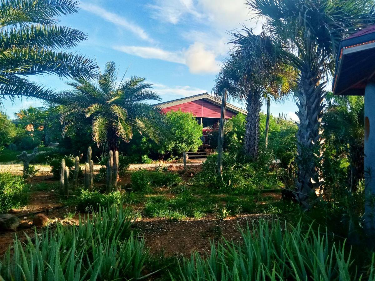 Курортный отель  Red Palm Village