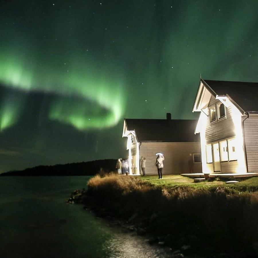 Лодж  Senja Arctic Lodge
