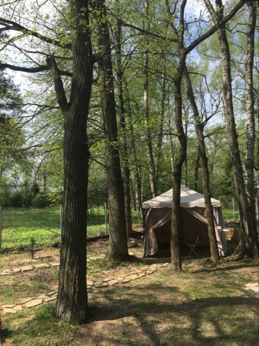 Гостевой дом  Forest Inn Vnukovo