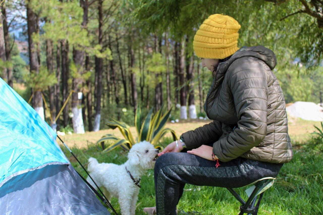 Люкс-шатер Camping Rancho La Joya