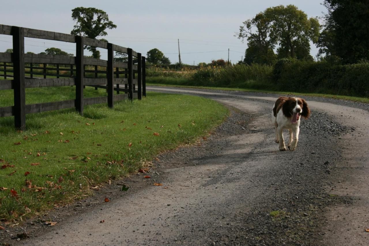 Great expectations, left wanting - The Green Barn Shop - TripAdvisor