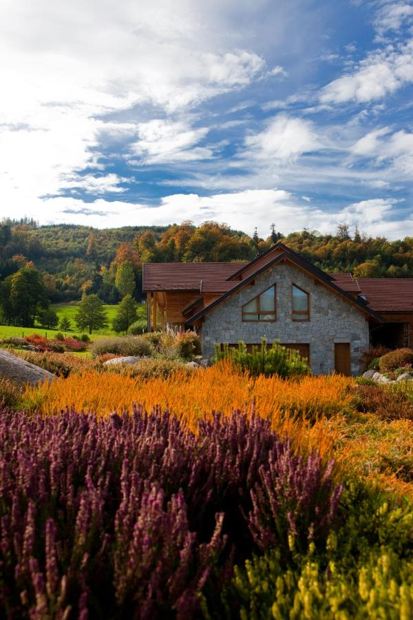 Bed And Breakfasts In Wildersbach Alsace