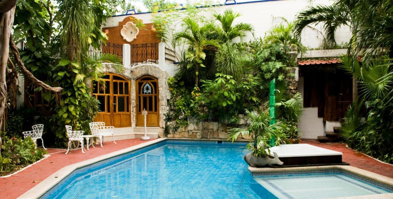 Отель  Eco-hotel El Rey Del Caribe