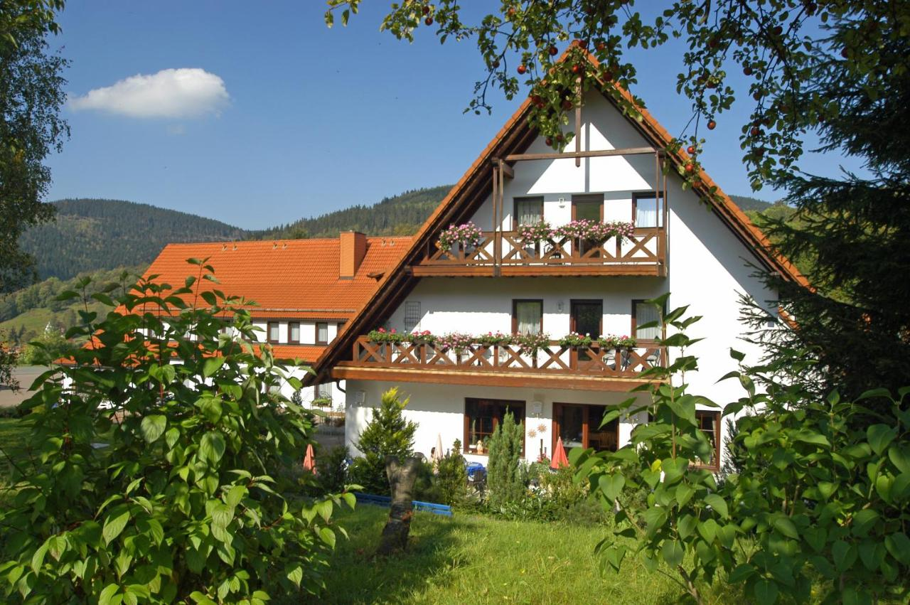 Отель  Berghotel Simon