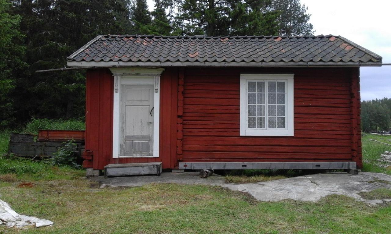 Svenska damer bjrtr eskort sexiga bilder adoos
