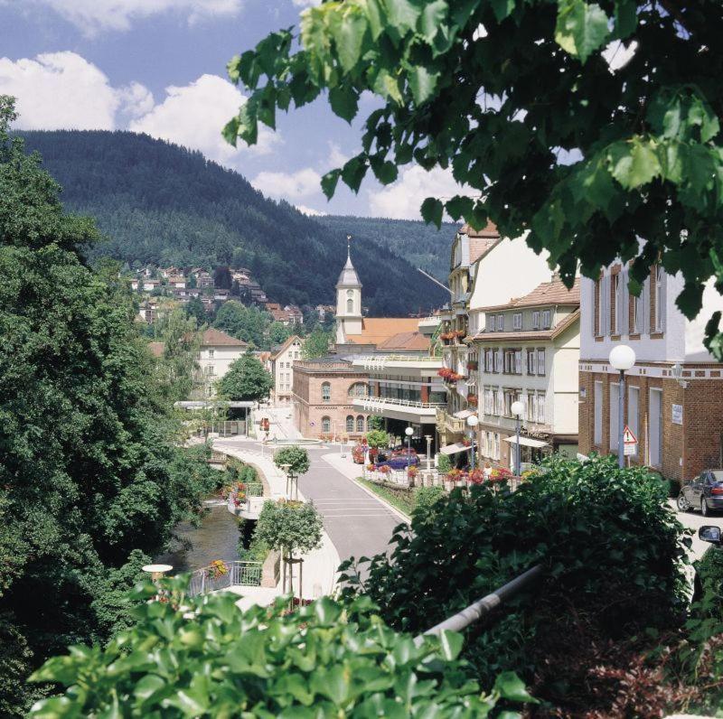 hotel traube (deutschland bad wildbad) booking com  grossanierung historischer charme der sommerberg bahn bleibt erhalten #12