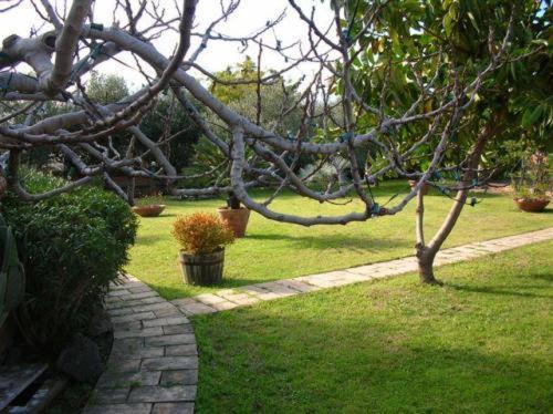 Отель типа «постель и завтрак»  Villa Chiarenza Maison D'Hotes