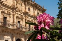 Abba Palacio de Soñanes Hotel