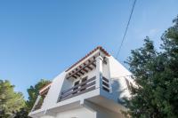 Bosc y Sol - Formentera Libre