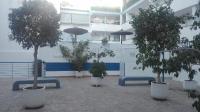 Residencial Pinomar
