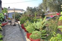 Armonia Guesthouse